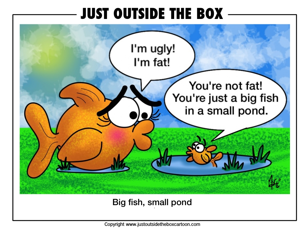 Big fish small pond archives just outside the box cartoon for Big fish pond