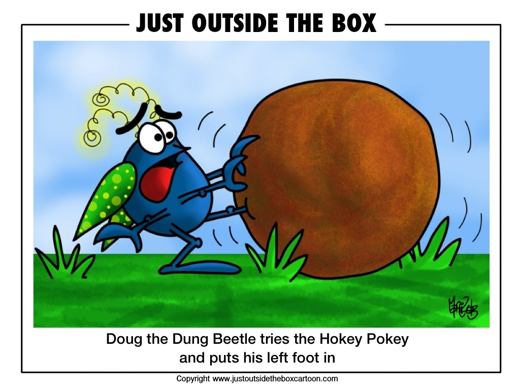 Doug the dung beetle does the hokey pokey