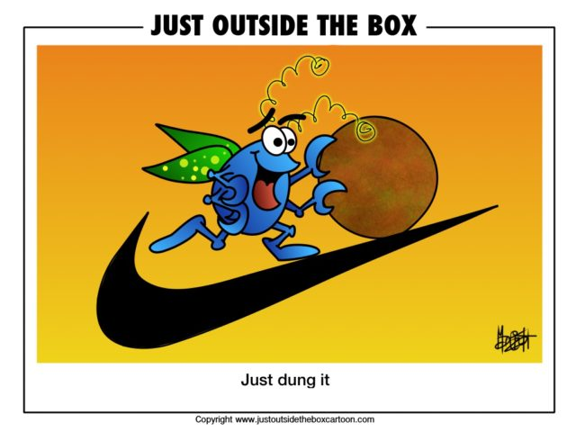 Doug Dung Beetle gets on with it