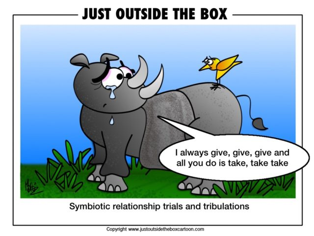 The truth behind the symbiotic relationship